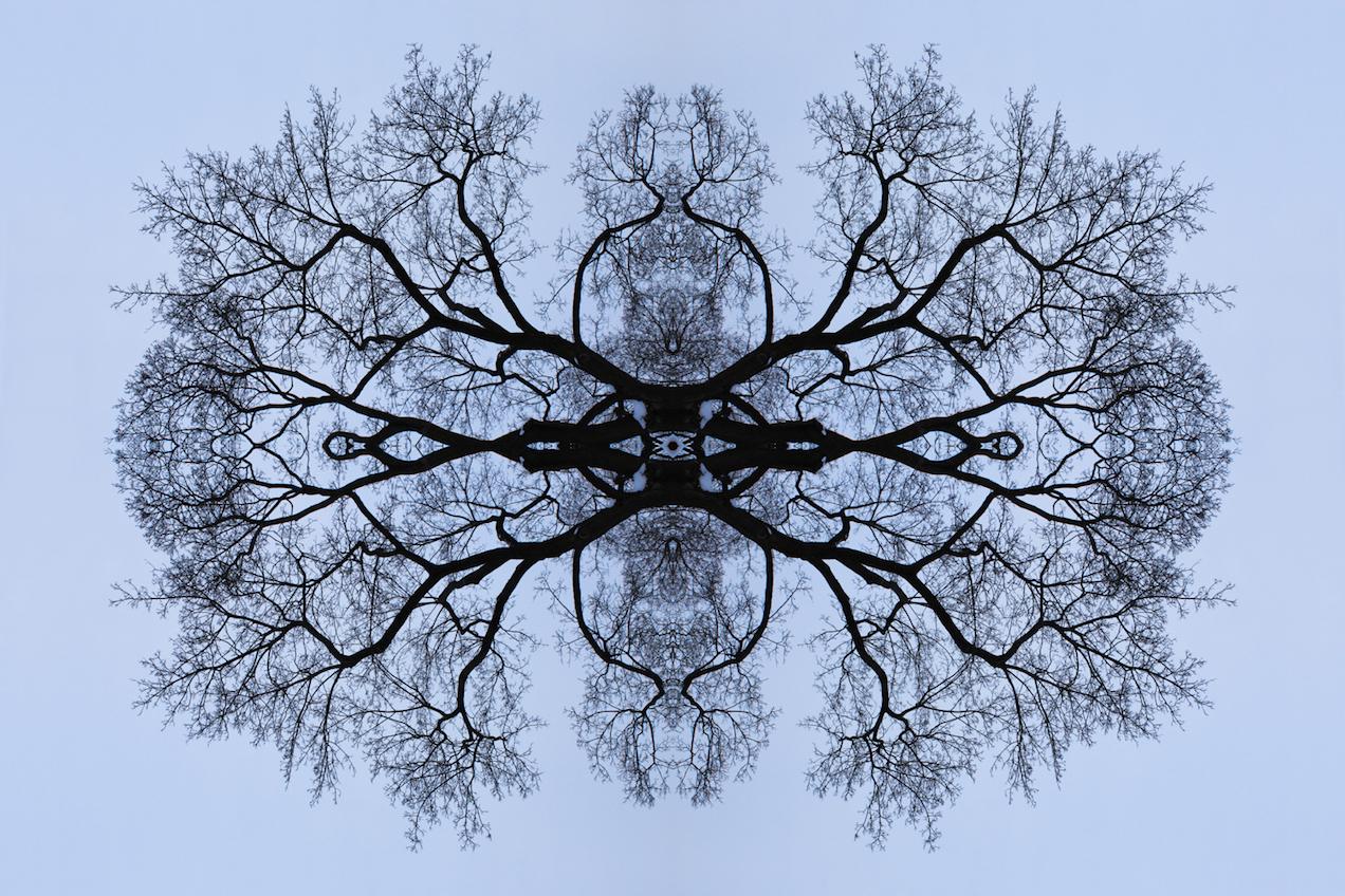 Untitled-5_8x12_lowres kopio